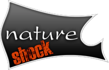 nature-shock